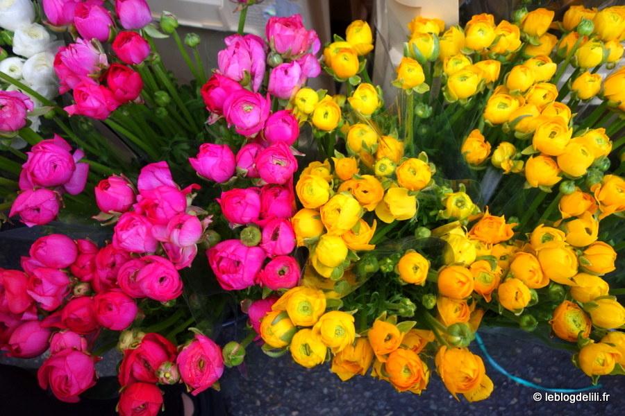 Le marché aux fleurs de Columbia road, la magie des couleurs à Londres