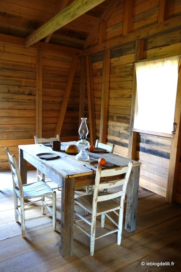 Les plantations de Louisiane : Houmas House, Oak Alley, Laura et San Francisco