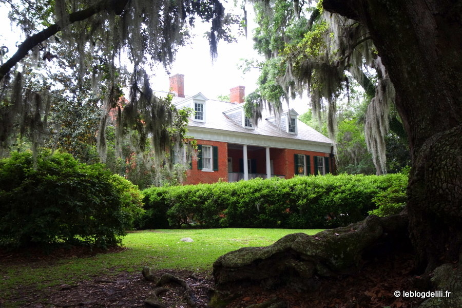 [Road trip en Louisiane] New Iberia et Avery Island