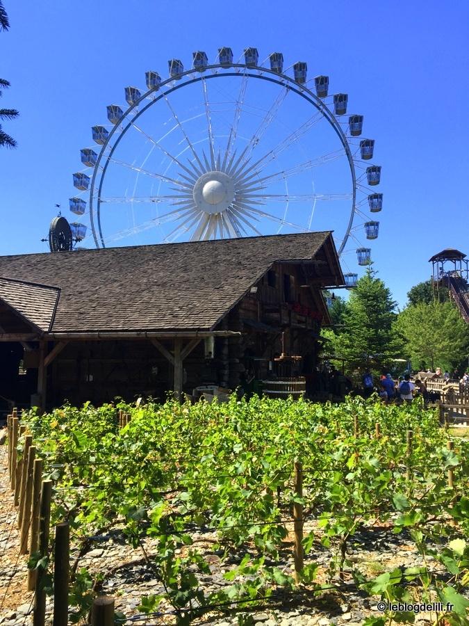 La verdure du village suisse