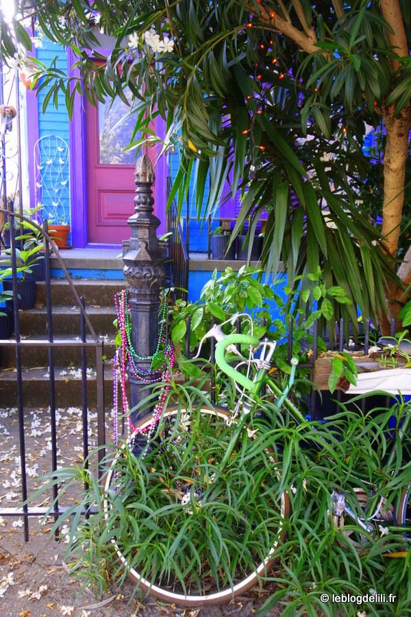 Voyage en Louisiane : la Nouvelle-Orléans côté jardins et université