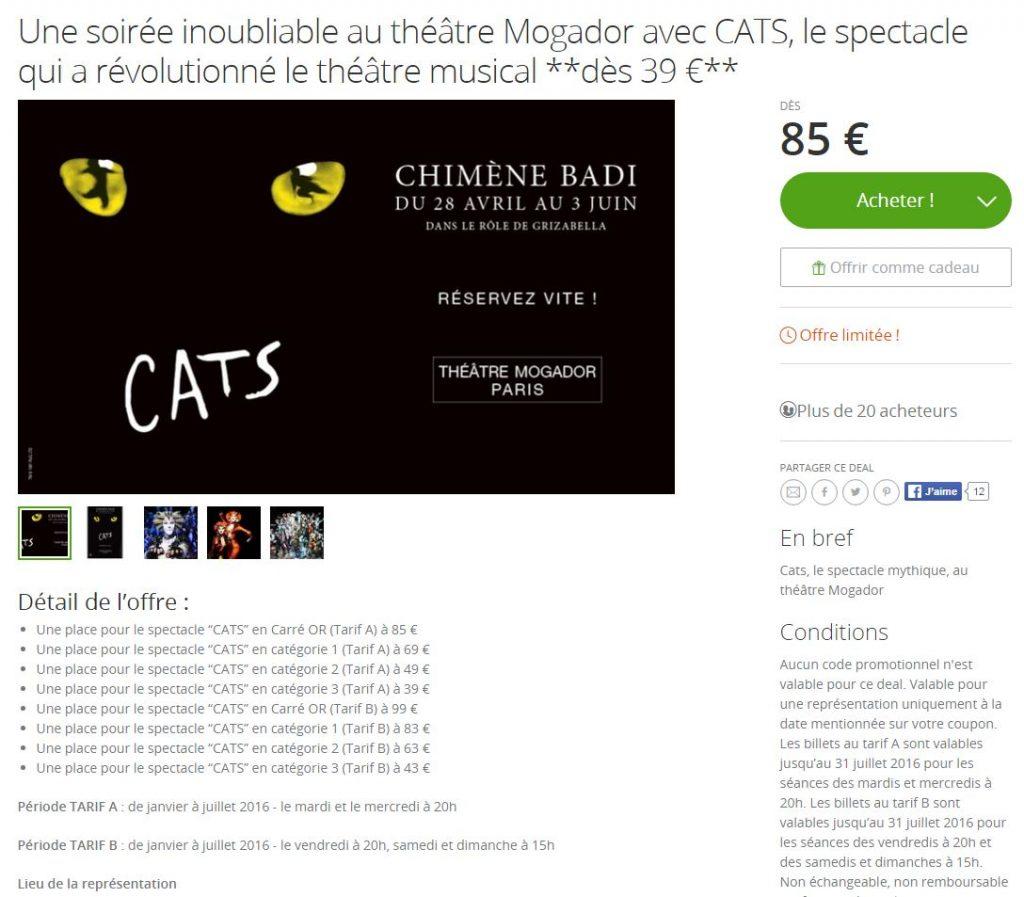 L'écran de réservation du spectacle Cats sur le site Groupon