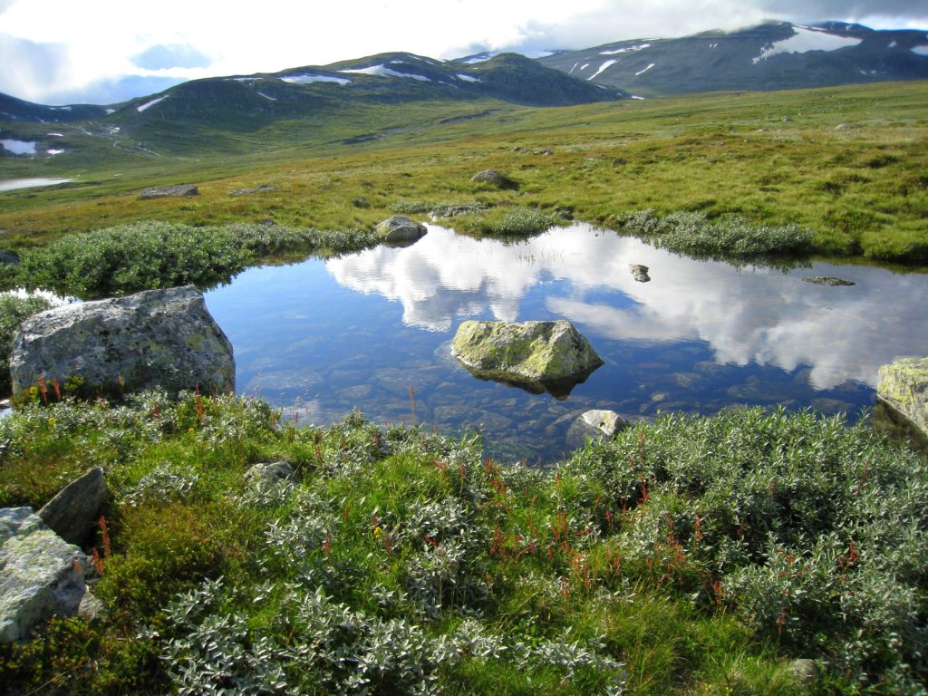 Paysage hors du temps en Norvège