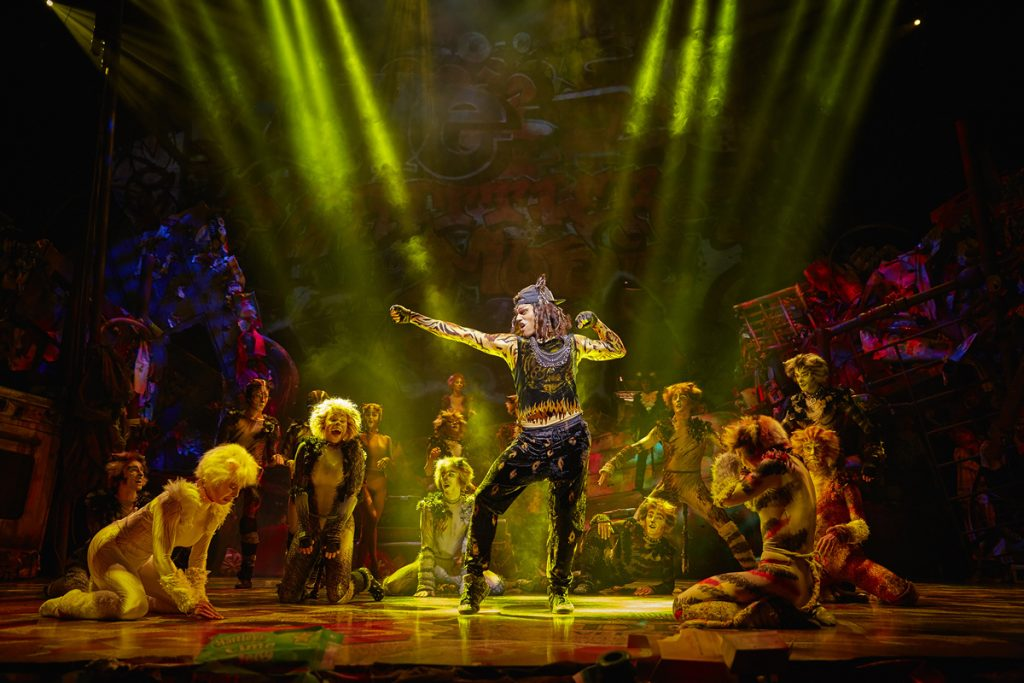 Le spectacle Cats à Paris, théâtre Mogador