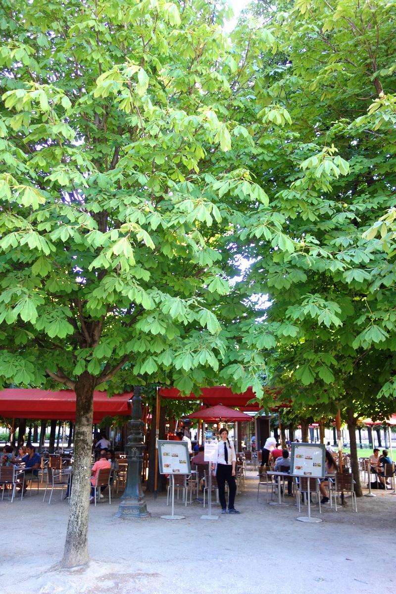 Jardin des tuileries horaires for Jardin tuileries