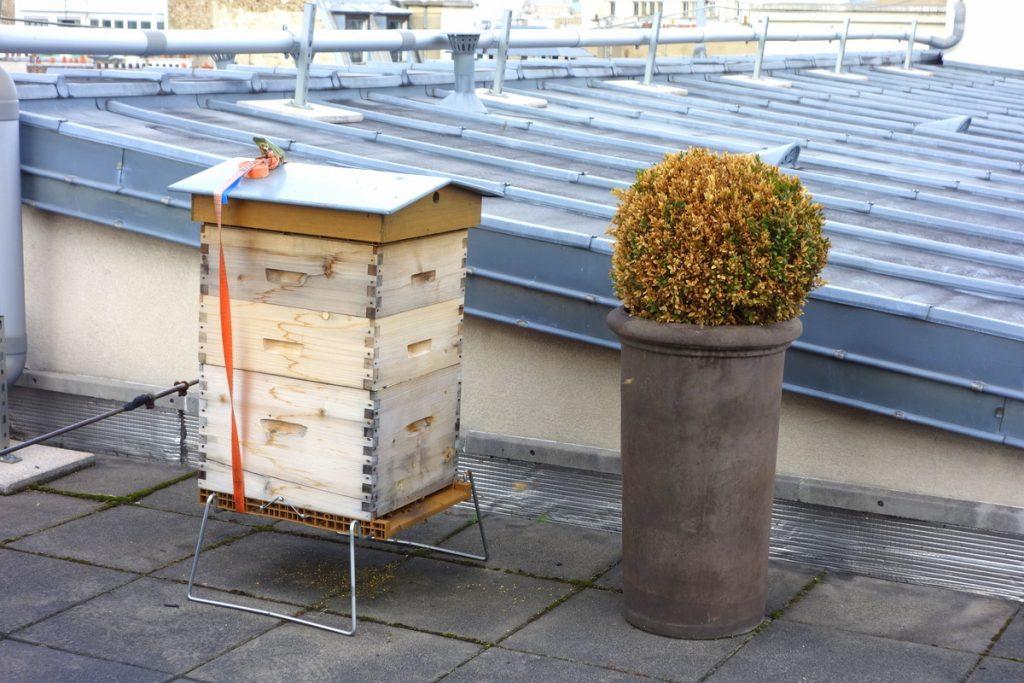 La ruche du Paris Marriott Champs Elysees Hotel