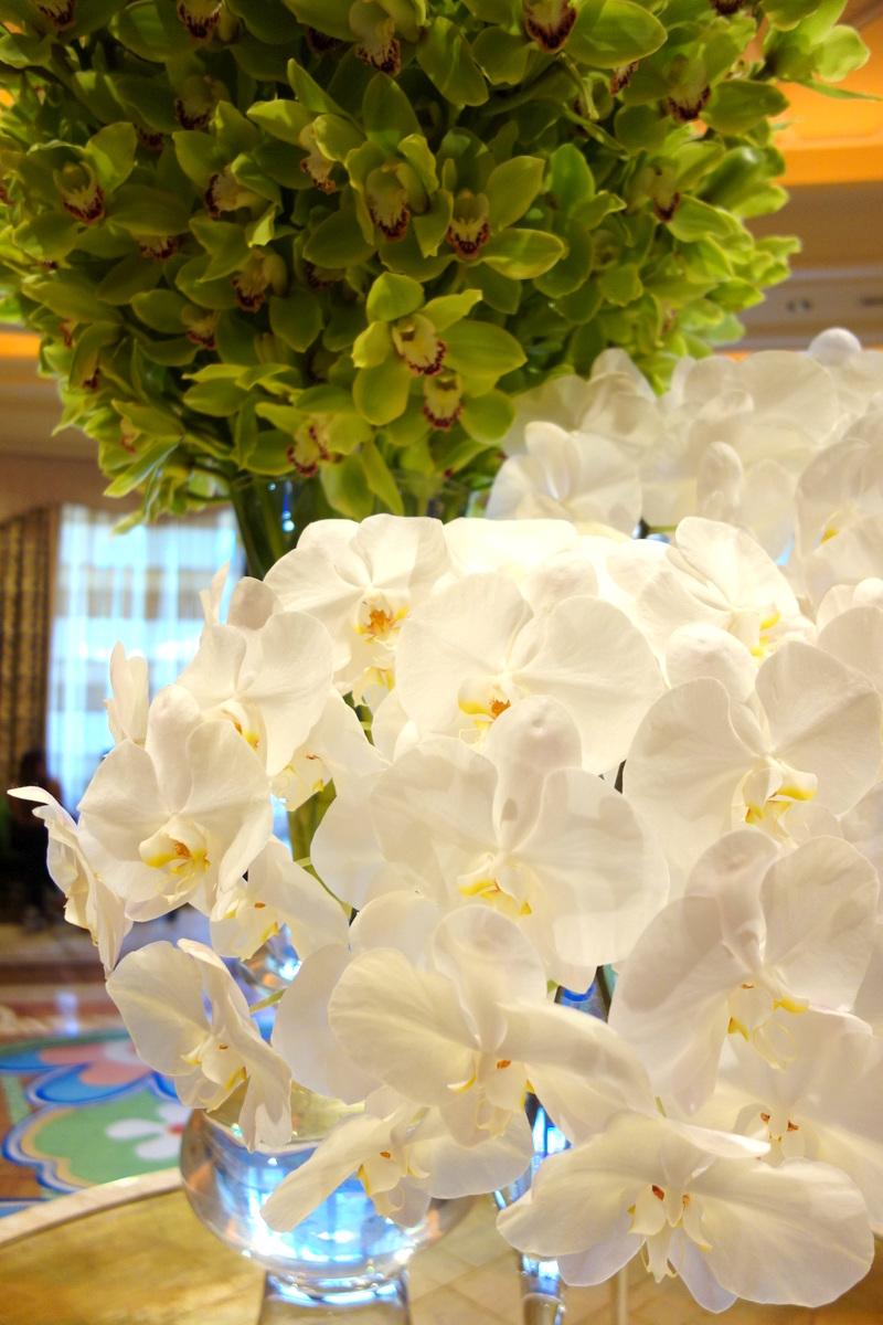 Les orchidées du Wynn Las Vegas