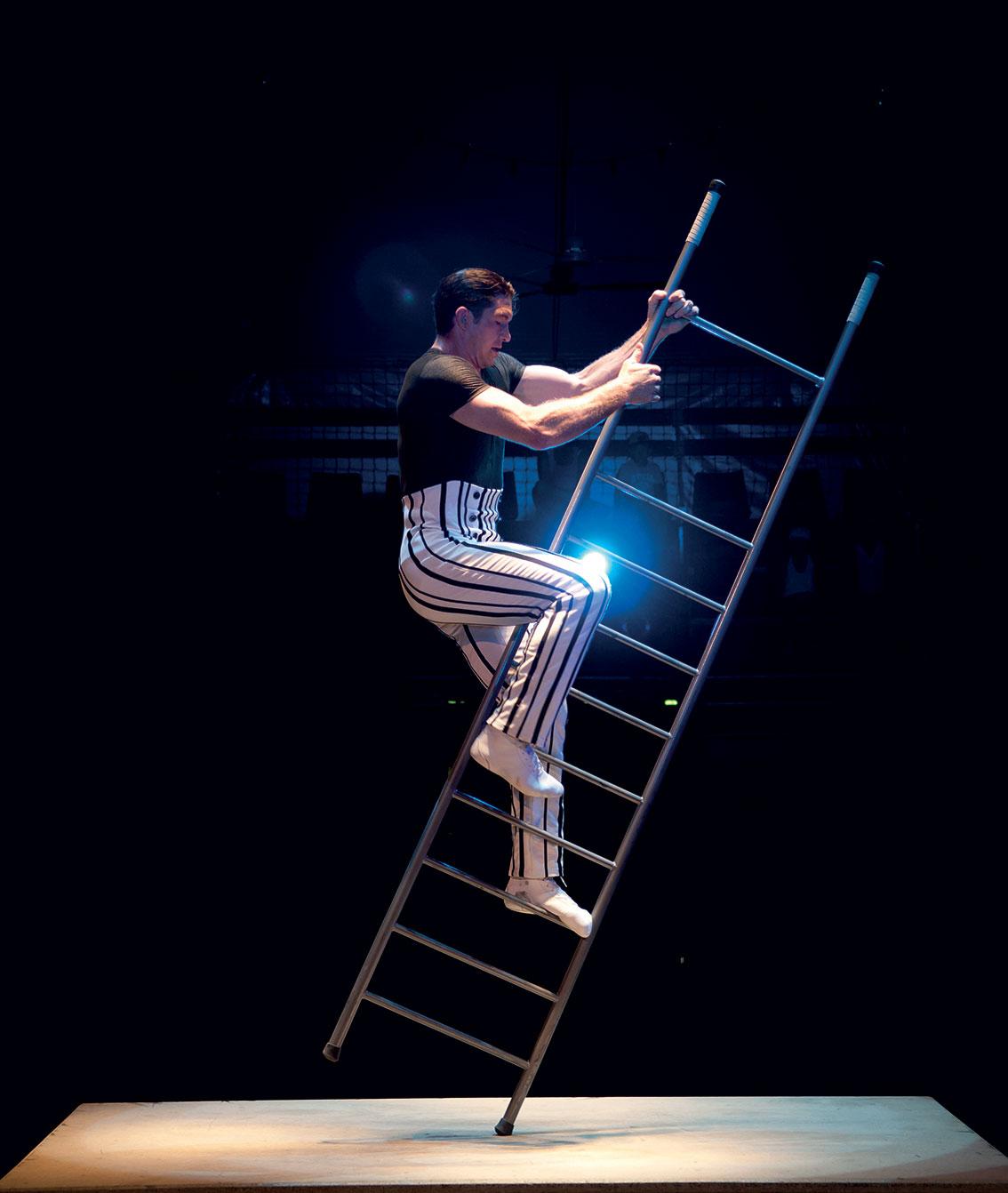 Quintessence, le spectacle d'Alexis Gruss et des Farfadais - Photo : Karim El Dib