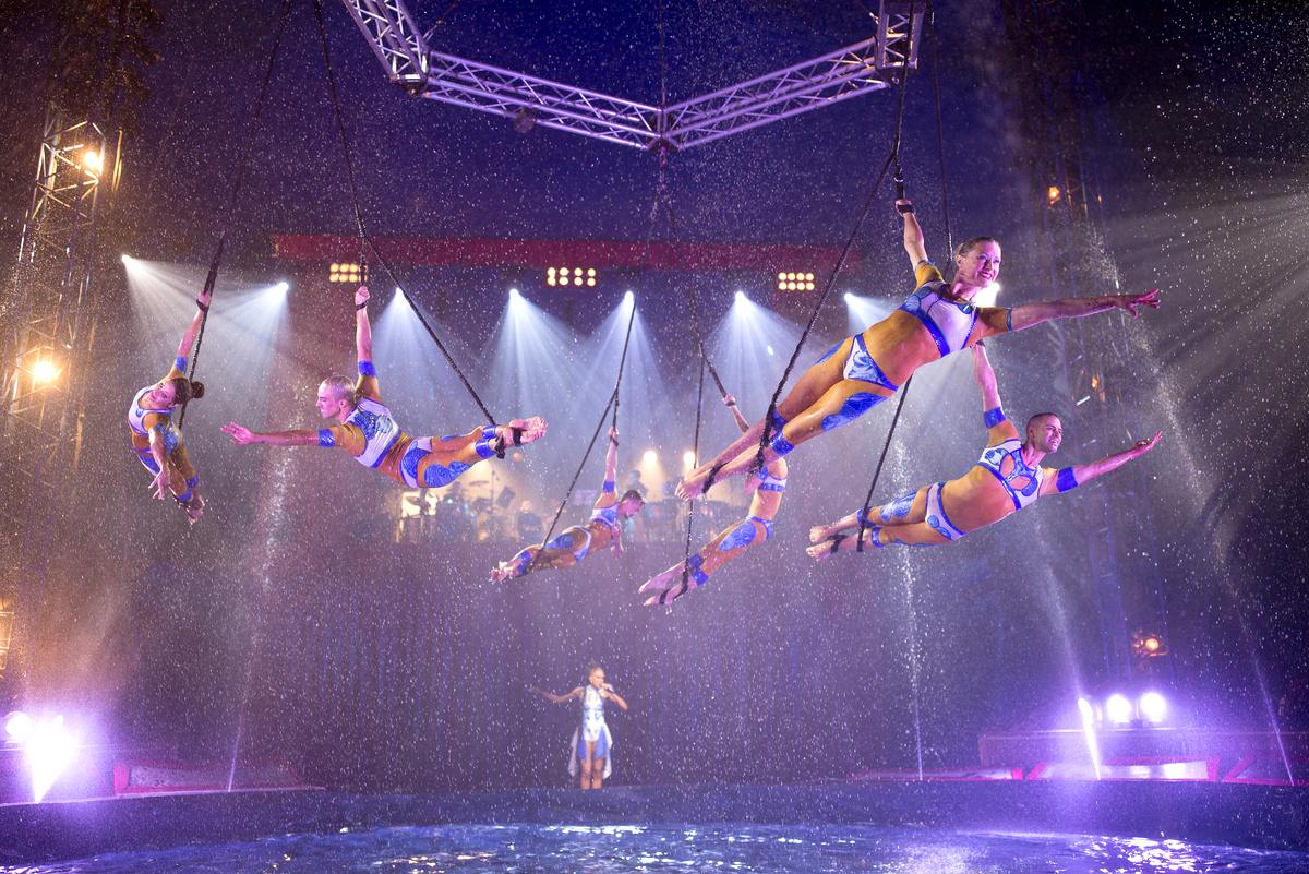 Quintessence le spectacle de nouveau cirque pr sent - Carrefour des cascades porte de passy ...