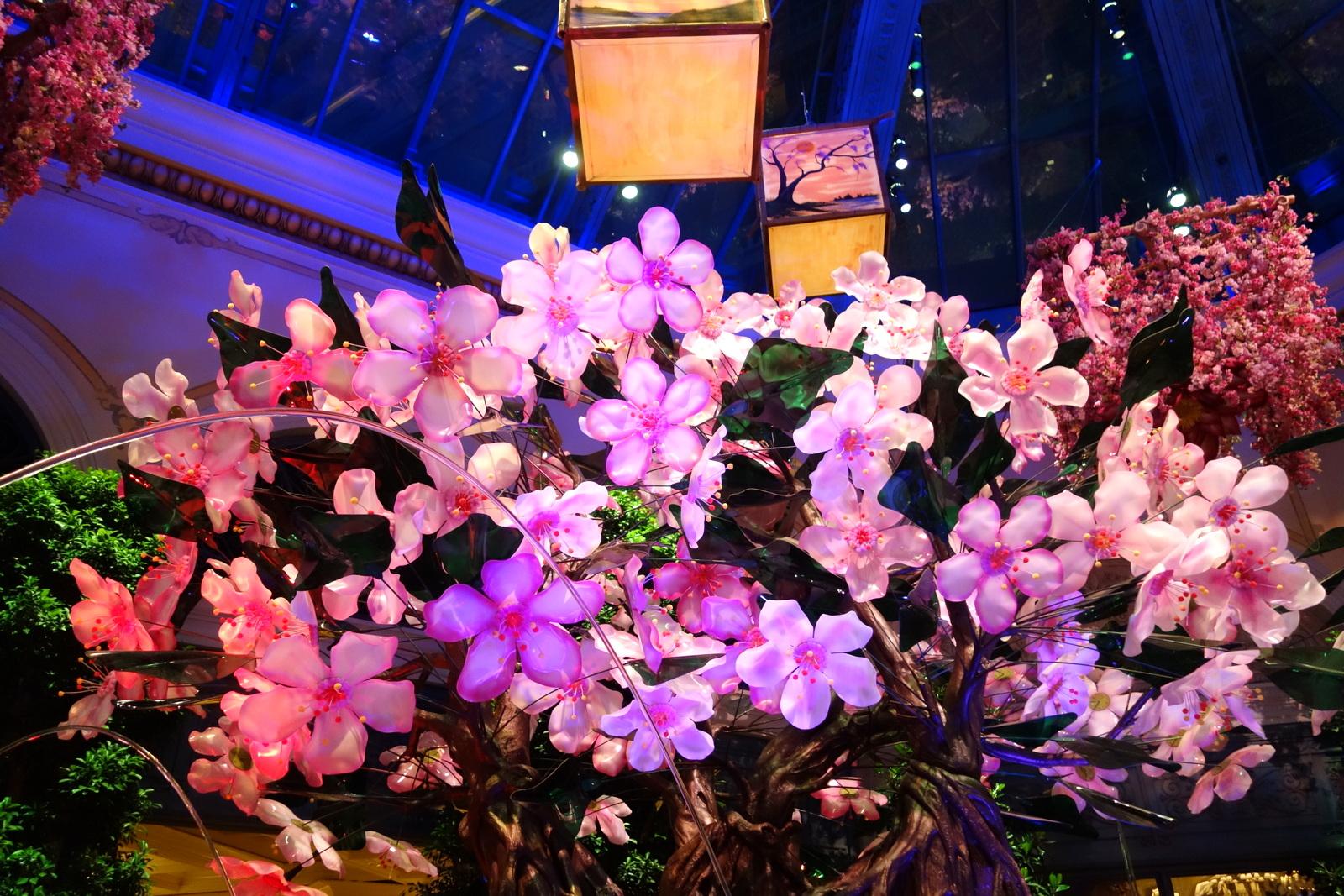 Bellagio hotel casino Las Vegas fleurs 13