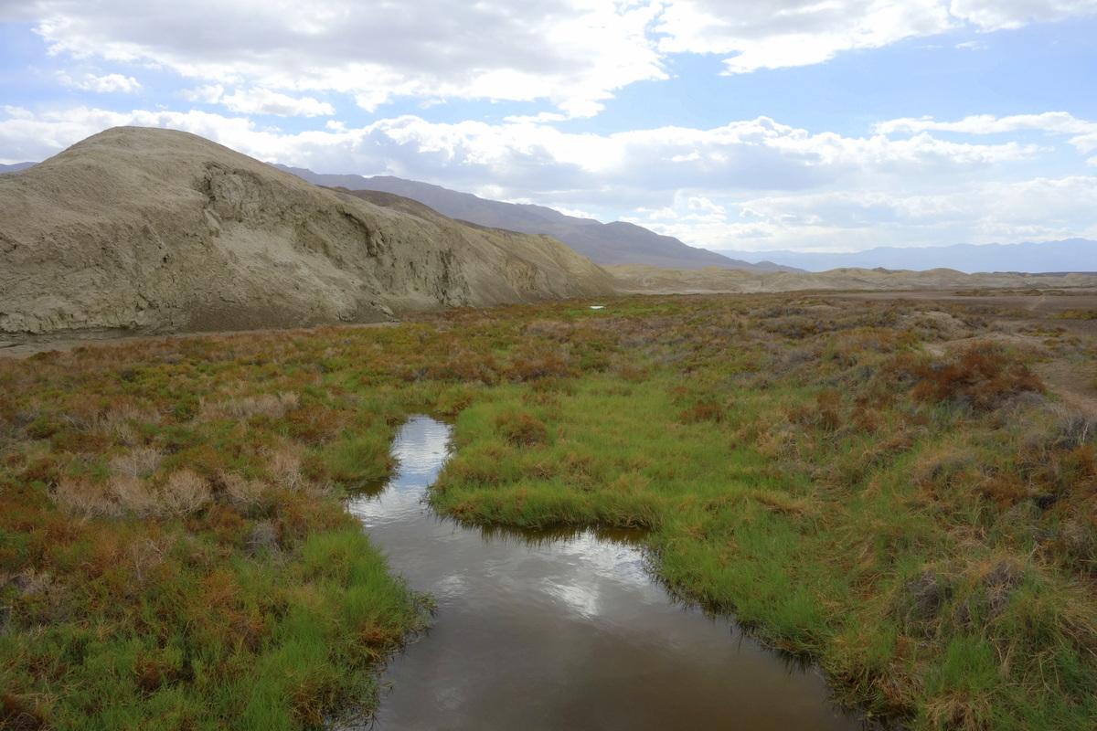 Salt Creek Interpretive Trail - Vallée de la mort - Californie - Le blog de Lili