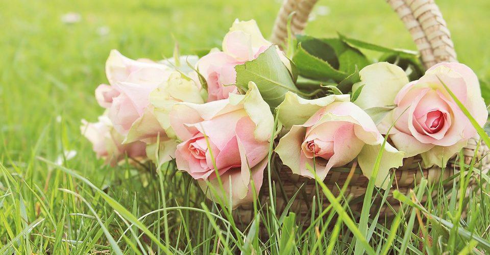 Roses-corbeille-Pixabay