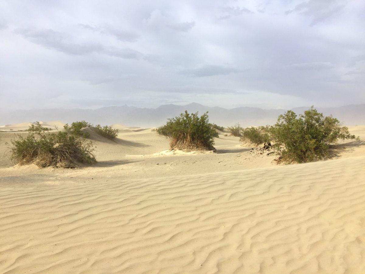 Sand Dunes - Death Valley - french travel blog