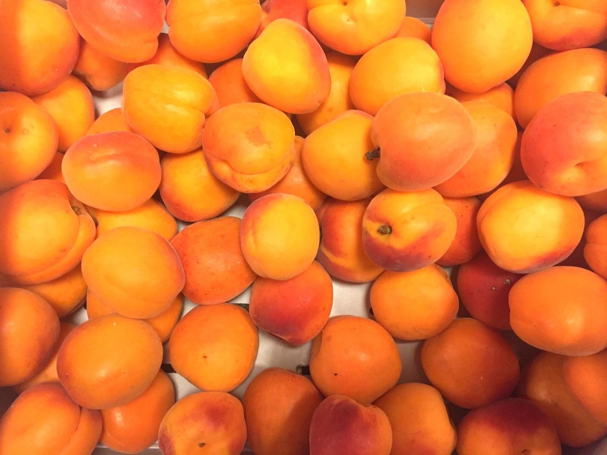 Fruits et légumes frais - Interfel - Abricots