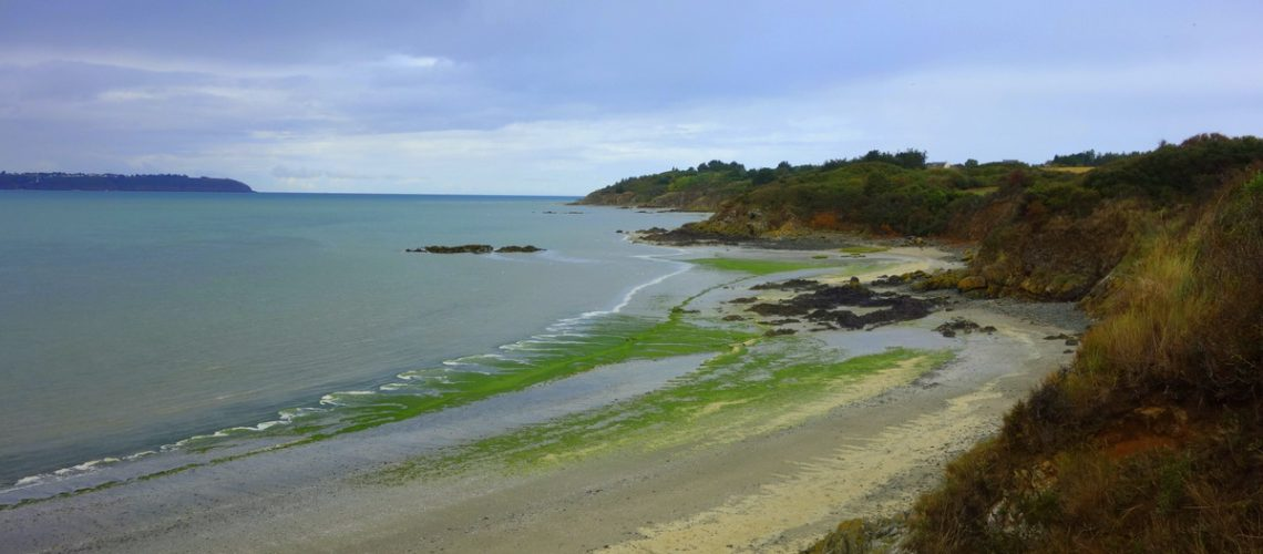 Baie de Saint-Brieuc, Bretagne - Photo : Le blog de Lili