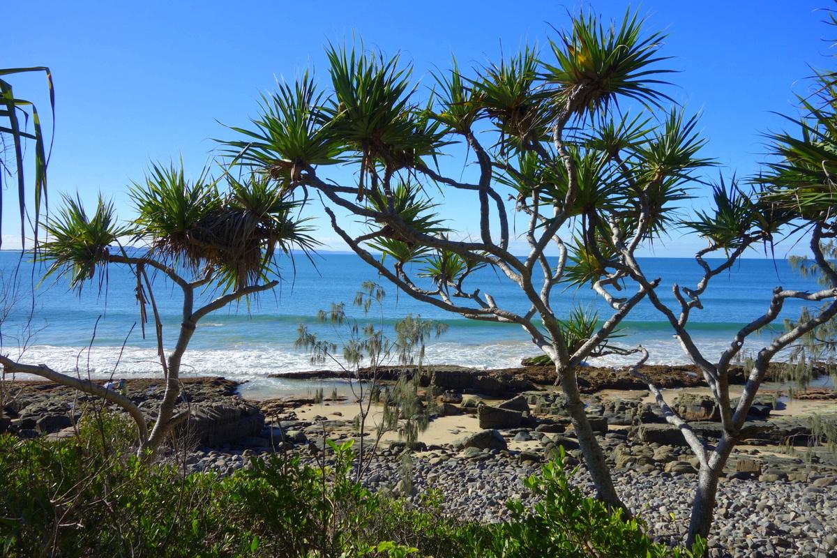 Voyage en Australie - Noosa - Le blog de Lili