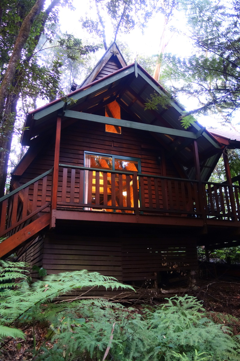 Voyage en Australie - The Mouses House - Rainforest retreat