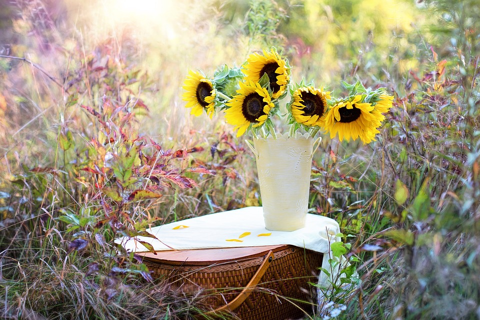 Joli bouquet de tournesols - Pixabay