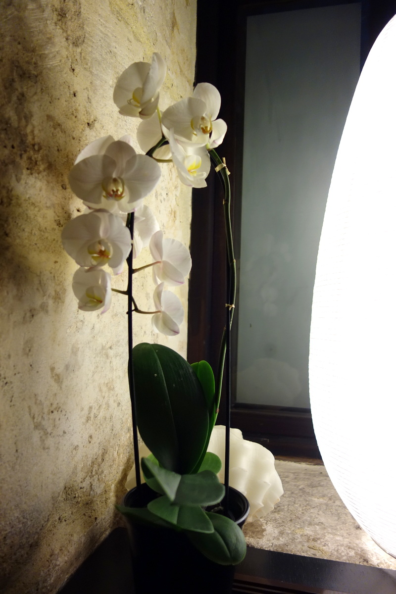 Spa Nuxe Montorgueil Paris - Orchidées