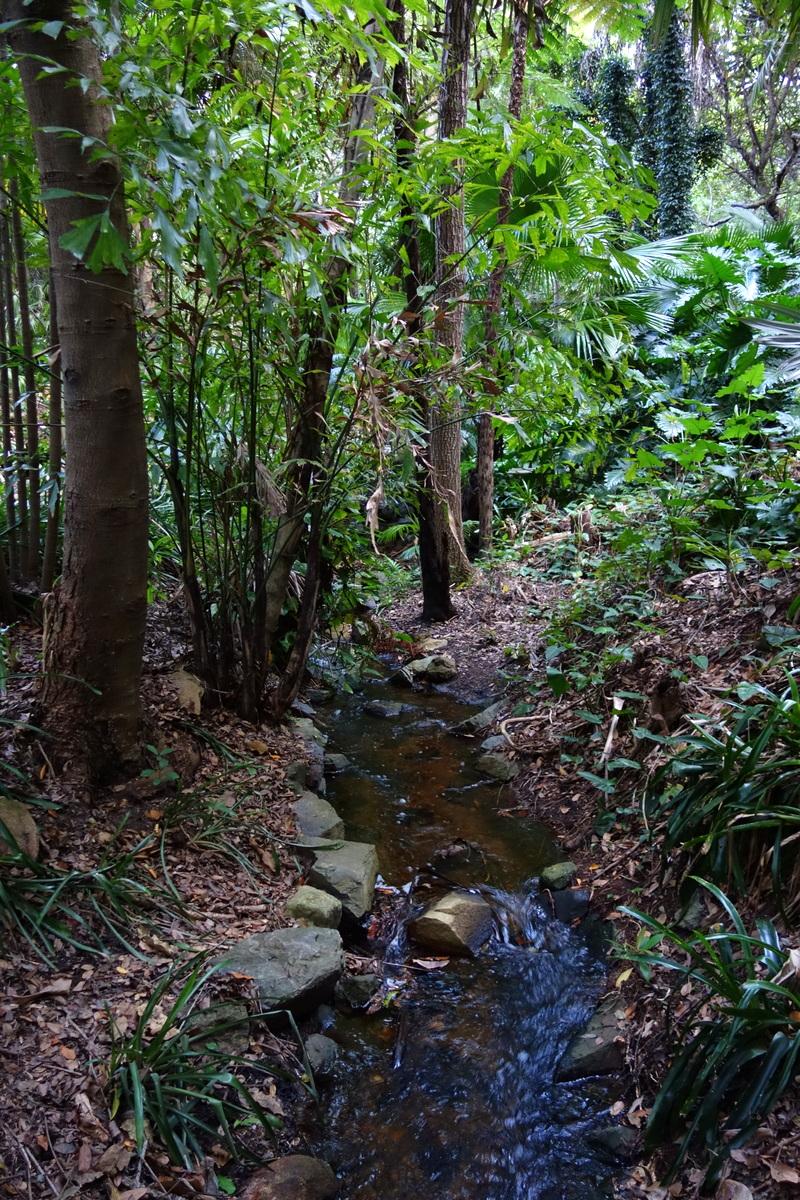Voyage en Australie : Brisbane, le jardin botanique