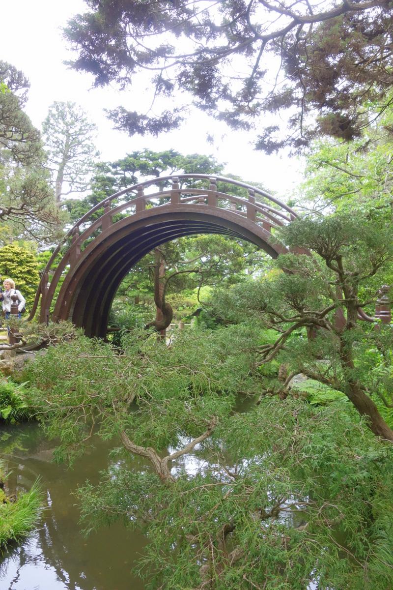 Voyage à San Francisco - Golden gate park - Le blog de Lili