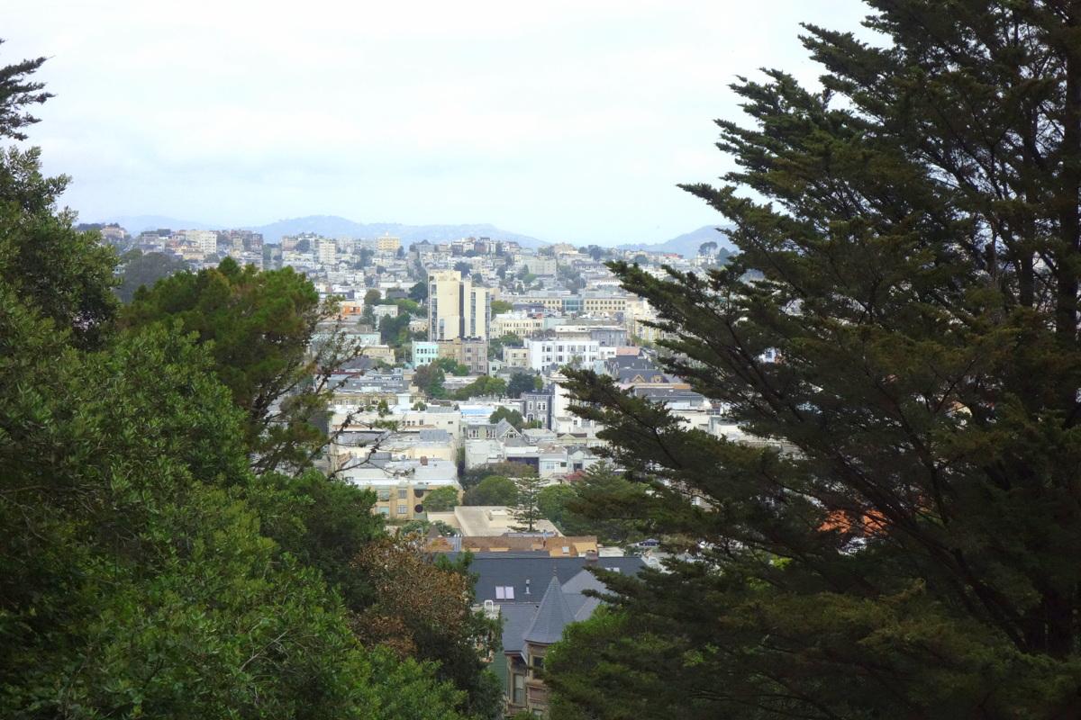 Voyage à San Francisco - Buena Vista Park - Le blog de Lili