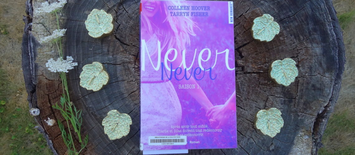 """Never Never"" saison 1, de Tarryn Fisher et Colleen Hoover"