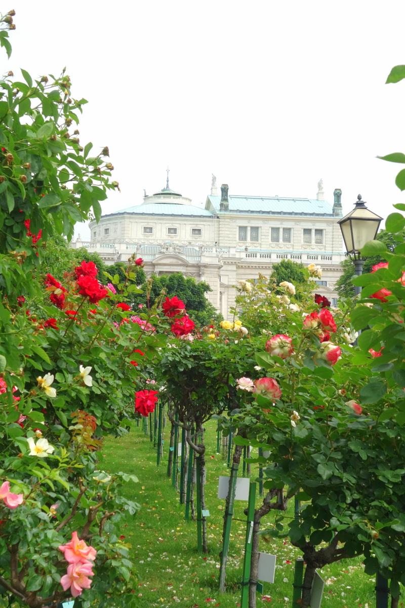 Hofburg - Palais impérial de Vienne - Jardin