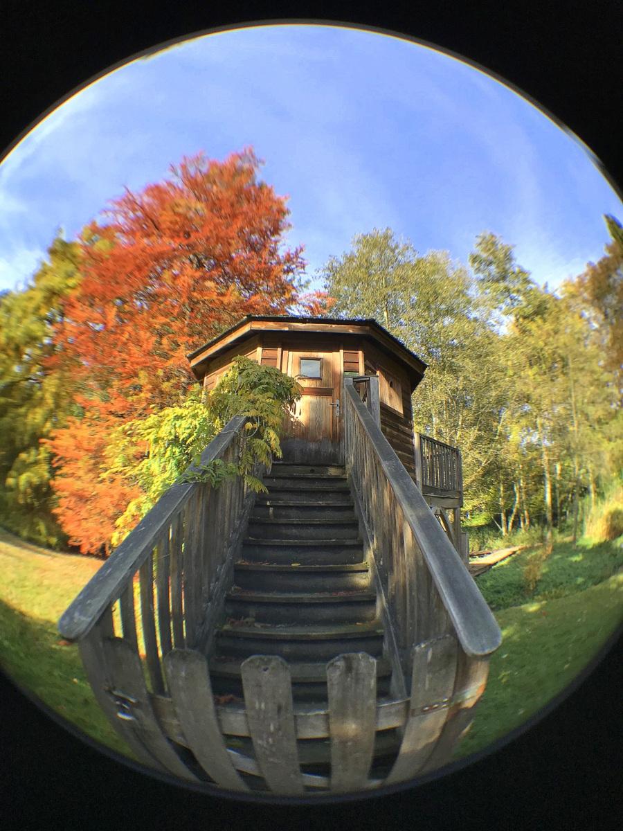 Parc de la Vallée aux loups, automne