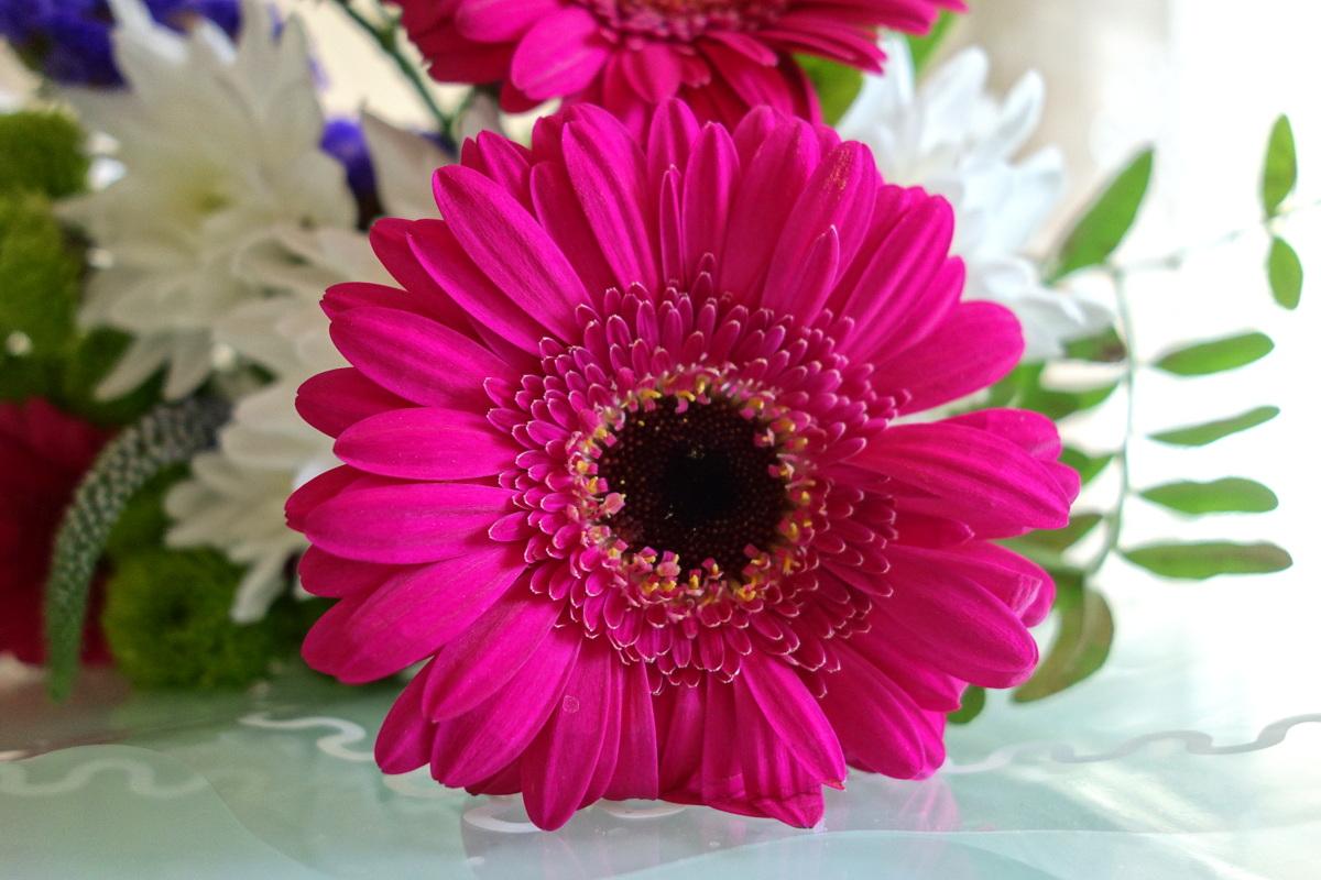 Un bouquet de fleurs acheté chez Auchan à Vélizy 2