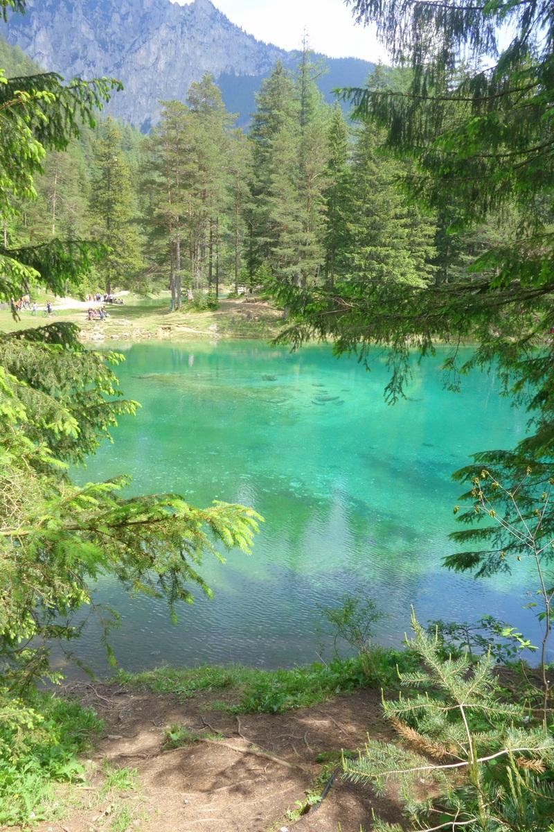 Voyage en Autriche - Grüner see / lac vert