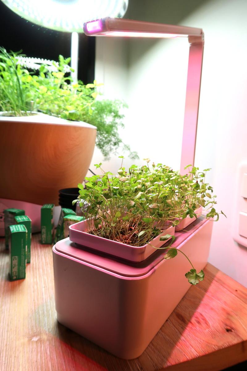 Jardiner avec Vilmorin