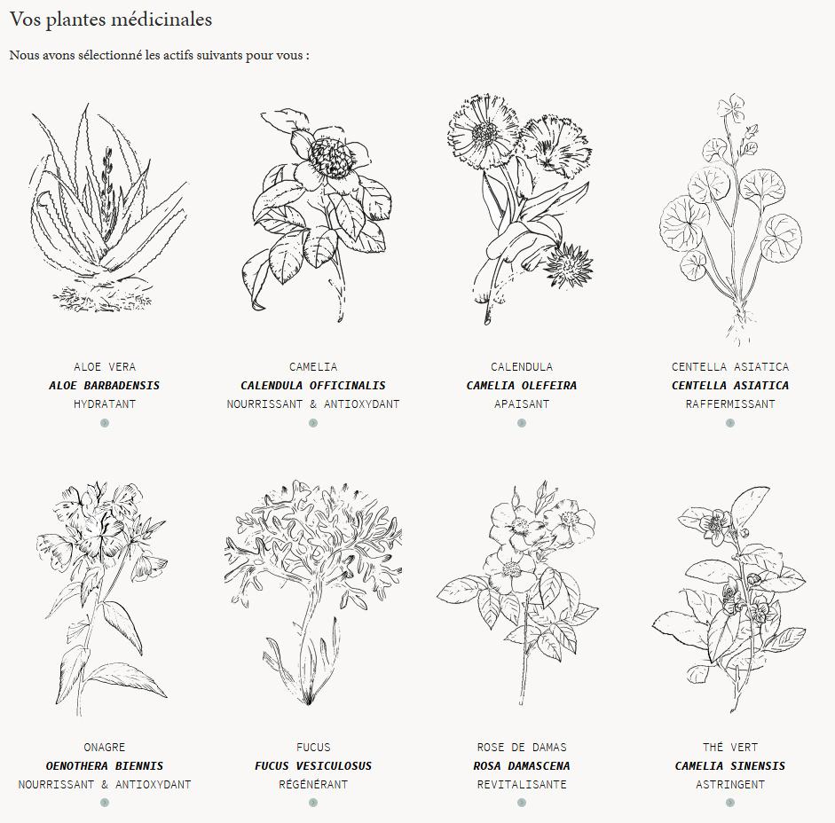 Plantes médicinales Laboté