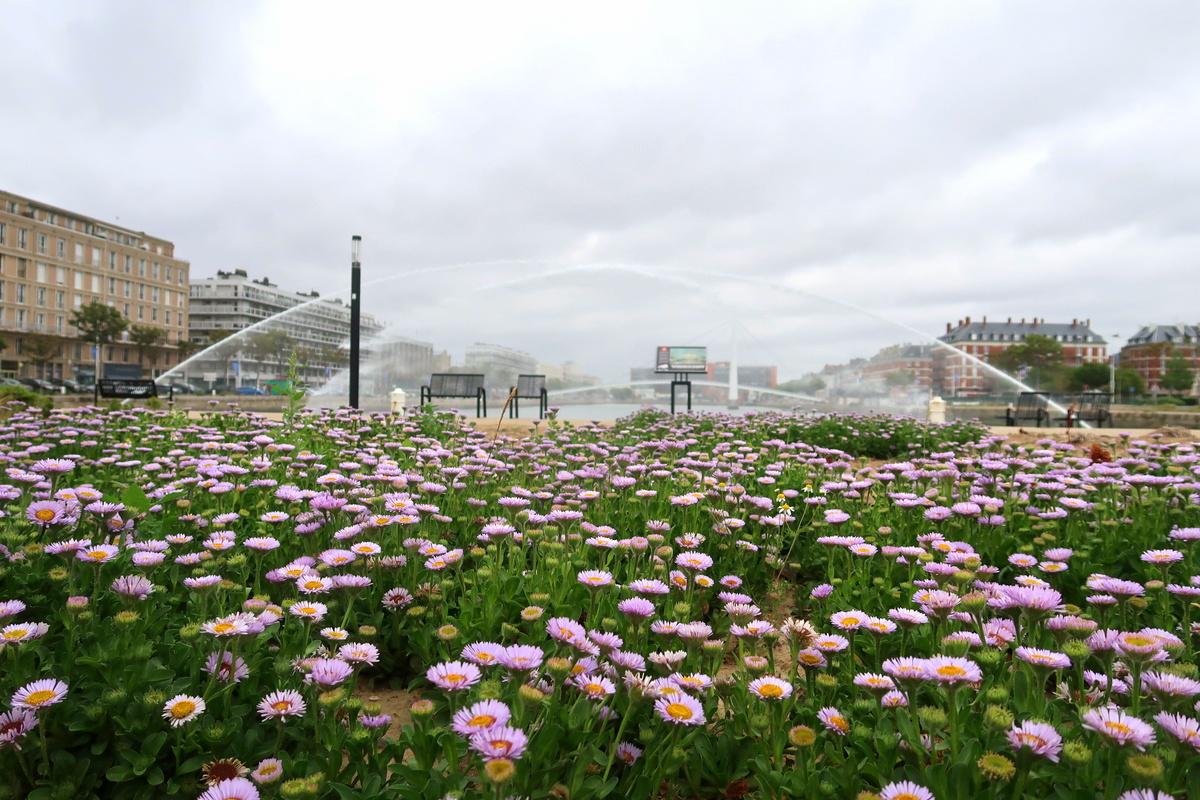 Le Havre - Impact