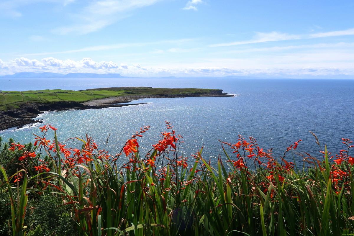 Superbe route côtière en Irlande, dans le Donegal