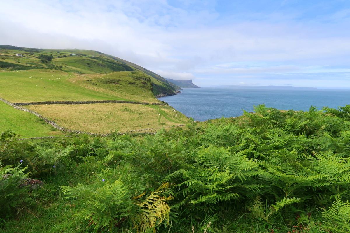 Irlande du Nord - Torr Head